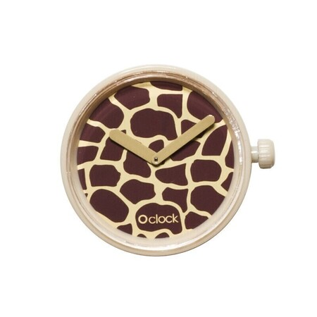 O clock dial safari giraffe